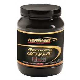 recovery bcaa-g - performance